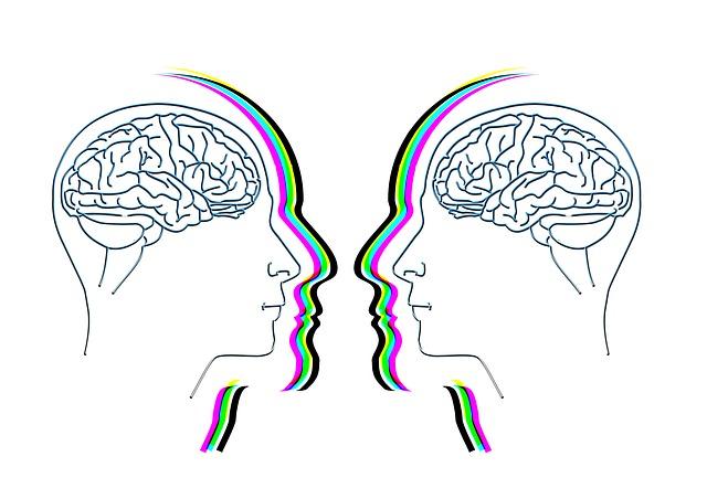 hlavy s mozkem